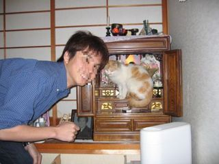 猫と旦那.JPG